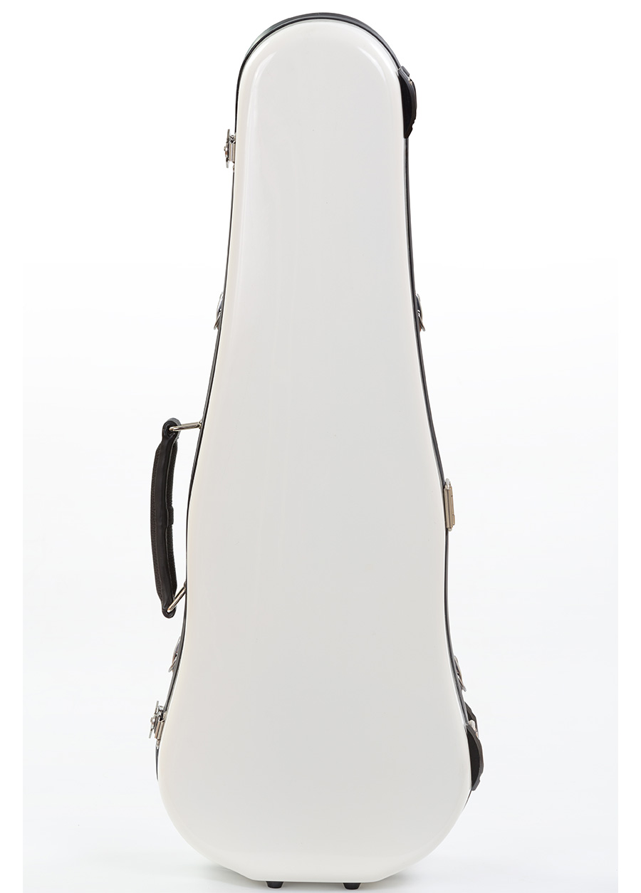 Violin Case – Artist Model